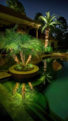 Cheap Landscaping Ideas, Tropical Pool Landscaping, Landscaping Design, Tropical Backyard Landscaping, Country Landscaping, Palm Trees Landscaping, Tropical Patio, Acreage Landscaping, Landscaping Equipment