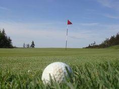 Ideas for Golf Ball Flower Arrangements thumbnail