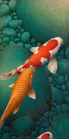 Artist Portfolio Gallery for Terry Gilecki Koi Fish Drawing, Fish Drawings, Koy Fish, Colour Pencil Shading, Fish Chart, Yin Yang Koi, Koi Painting, Koi Art, Koi Fish Pond