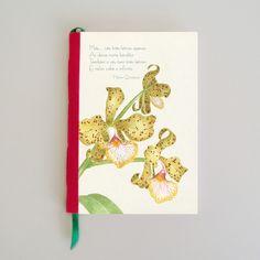 Sketchbook  - Orquídea Amarela-Ilustração de Gina Nogueira - DG2Escritório de Arte