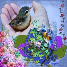 Made By Mary Anne (Marya149) Made By Mary, My Scrapbook, Birds, Rock, Landscape, Nature, Animals, Animaux, Bird