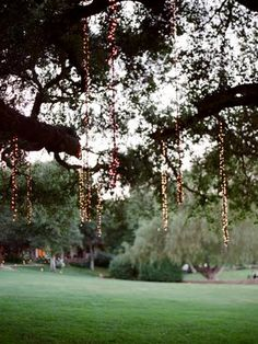 love these hanging string lights from trees! i hate when people try to wrap tre… love these hanging string lights … Wedding Blog, Wedding Reception, Our Wedding, Dream Wedding, Wedding Stuff, Forest Wedding, Sunset Wedding, Tent Wedding, Wedding 2017