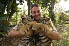 Australia zoo keeper with tiger cubs spot and stripe.