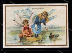 Children Fairy tale  Large Trade card  Insects by Printvilla4you