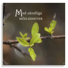 Kort Med oändliga möjligheter, ur kollektion Livskonstnär. Foto: Anja Callius. Från (c) Kreativ Insikt.