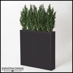 Slender Cedar Screen in Rectangle Planter, 6' $1,190.85