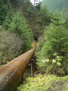 Water pipeline for gold mines, Juneau Alaska