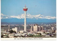 First time I lived in Calgary, the tower was the tallest building! Calgary Alberta Canada I really wish to go there :) Ottawa, Skyline, Canada Day, Thats The Way, Birds Eye View, Old Postcards, Alberta Canada, Outdoor Life, Canadian Horse