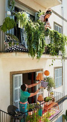 Wie wäre ein Sommer auf Balkonien? Du lernst die Nachbarn besser kennen und ihr verbringt vielleicht sogar schöne Abende mit gemeinsamem Grillen.