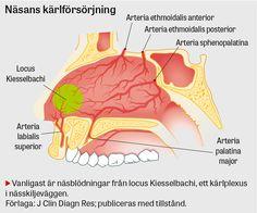 Praktisk handläggning av  näsblödning