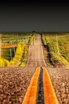 Vía entre campos.