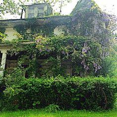 Abandoned historic victorian house, Trenton NJ 23 Jun 2014
