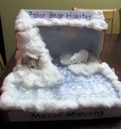 Polar Bear Diorama Mason's 1st grade project 10/19/2016 Science Projects, School Projects, Projects For Kids, Crafts For Kids, Arctic Habitat, Bear Habitat, Diorama Kids, Arctic Animals, Project 4