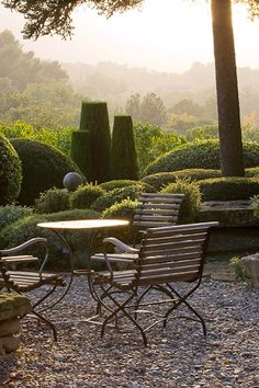 Provence, France: Garden of Nicole De Vesian, La Louve: Gravel Terrace Beside the House at Dawn with Metal Table and Chairs and Clipped Topiary Shapes Diy Garden, Dream Garden, Garden Landscaping, Provence Garden, Provence France, Landscape Design, Garden Design, Famous Gardens, Outdoor Living