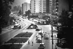 Municipio Chacao / Parroquia Chacao / Avenida Francisco de Miranda (1952)