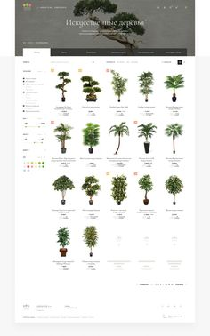 Treez Collection on Behance
