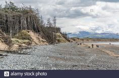 Anglesey, Snowdonia, Wales Uk, North Wales, Grand Canyon, Backdrops, Stock Photos, Bird, Mountains