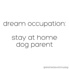 I would love to stay home with our fur babies (: