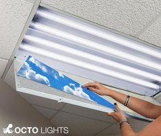 octo lights install