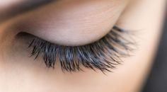 Get those Lashes looking perfect for the Holiday- Check out our Lash Specials including Eyelash Extensions, Lash & Brow Tints! Click the link in or Bio to book your service online! Coconut Oil Uses For Skin, Homemade Coconut Oil, Coconut Oil Beauty, Natural Coconut Oil, Benefits Of Coconut Oil, Stretch Marks Coconut Oil, Lash And Brow Tint, Castor Oil Eyelashes, Salud Natural