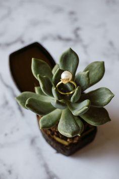 Bridal Jewelry, Succulents, Earrings, Plants, Etsy, Aussies, Gold, Green, Ear Rings