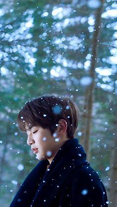 강다니엘 Daniel One💜 Onii San, Daniel Day, Kim Jaehwan, Ha Sungwoon, Seong, Produce 101 Season 2, Jinyoung, Handsome Boys, K Idols