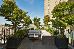 Small roof top terrace with lounge seating area. The container planted deciduous small trees provide just enough privacy without creating a claustrophobic atmosphere. Edmund Hollander Landscape Architects | Central Park West Rooftop