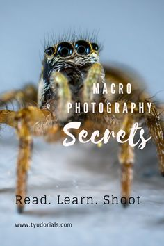 10 Macro Photography Tips for Better Results - Oh! How wonderful these tiny worlds are. Capturing them is a challenge,really. These tips will sure - Macro Photography Tips, Photography Essentials, Photography Awards, Camera Photography, Wildlife Photography, Learn Photography, Camera Hacks, Camera Tips, Expensive Camera