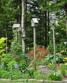 bird feeders and birdhouses.