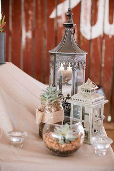 succulents, lanterns