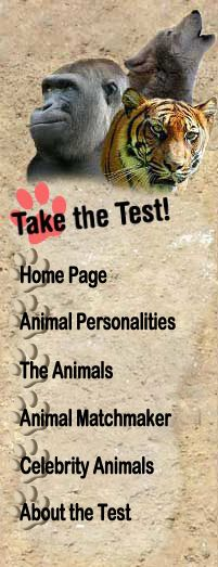 What animal are you? Apparently I'm a bat... Take the quiz the matchmake yourself with your best animal out there! lol