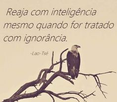 EQUILÍBRIO: Reaja com inteligência, Lao-Tsé Quiet People, Reflection Quotes, Where Is My Mind, Eagle Eye, Teen Quotes, More Words, Positive Thoughts, Tao, My Images