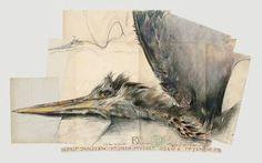 Fischereiher sold by Villa Grisebach, Berlin, on Friday, May 2006 Oslo, Gouache, Horst Janssen, Illustrator, Notebook Drawing, Artist Sketchbook, Toned Paper, Wood Engraving, Bird Art