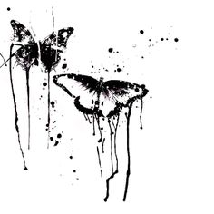 butterfly ink splash picture and wallpaper