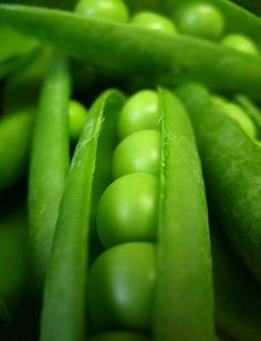 fresh peas - I have been eating a lot of these lately. They may very well be the best snack food.