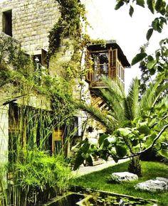 tropical garden elements