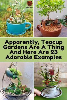 Fairy Garden Pots, Fairy Garden Houses, Gnome Garden, Garden Art, Garden Design, Fairy Gardening, Fairy Crafts, Garden Crafts, Garden Projects
