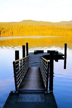 Lake Padden - Bellingham (feed ducks, swim, walk, park, bbq)