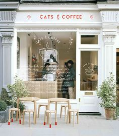 Cats & Coffee, what a cute little store front. Love all the cursive on the window. Plus the simple no frills logo