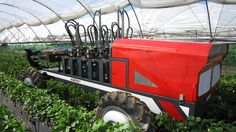 Agrobot has the Agrobot and AGSHydro, a bed-on hydroponic growing system customized for strawberry growing and harvesting with 60 robotic picking arms. Hydroponic Growing, Hydroponics, Types Of Innovation, Asteroid Mining, Precision Agriculture, Human Well Being, Fruit Picking, Vertical Farming, Agriculture