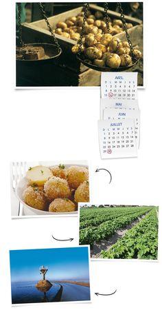 La pomme de terre primeur de l'île de Noirmoutier. Avril -> Juillet. La Bonnotte. #Vendée Avril, Jaba, Place Cards, Place Card Holders, Kitchens
