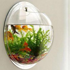 Wall Aquarium, Home Aquarium, Aquarium Design, Acrylic Aquarium, Aquarium Ideas, Flower Vases, Flower Pots, Cool Fish Tanks, Small Fish Tanks