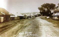 Main St (now Great Western Highway),St Marys in western Sydney in 1900 looking east. Penrith, Great Western, Historical Images, Teaching History, Local History, Blue Mountain, South Wales, Old Photos, Over The Years