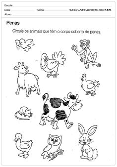 Atividade de Ciências para Educação Infantil - Circule os Animais