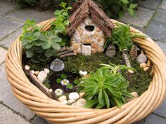 Come spring I am going to make me a few of these cute little fair gardens...heck I may make my entire yard a fairy garden lol