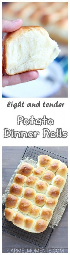 Light and Tender Potato Dinner Rolls // @gatherforbread