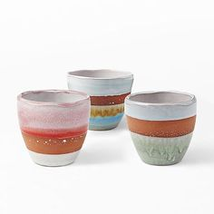 Striped Terracotta Pots #westelm - gorgeous colors and not expensive at all!