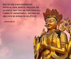 Pear of Wisdom