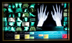 Museum of Science and Industry | Medical Imaging
