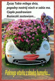 Botanical Gardens Near Me, Organic Gardening Magazine, Garden Online, Gardening Magazines, Plants, Quote, Key, Night, Good Morning Funny
